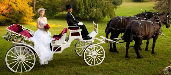 horse-carriage-weddings-va.jpg